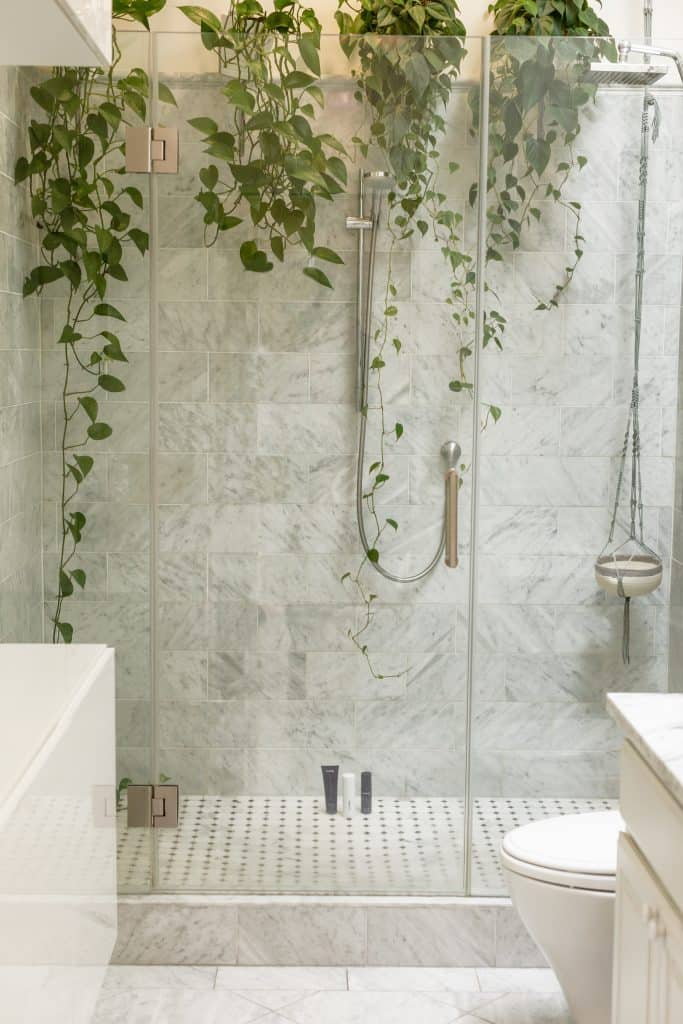 A shower with greenery: shorter showers help contribute a lot to sustainability.